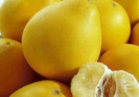 福建漳州:柚子出口仍旧炽热