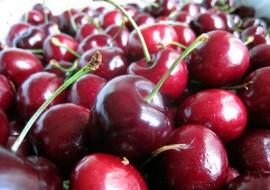 智利水果生产者联合会:智利水果在中国市场的发展潜力和未来期望