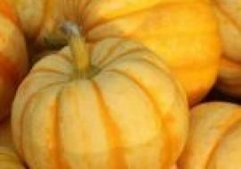 VC果园:菊瓜怎么吃?菊瓜和南瓜的区别