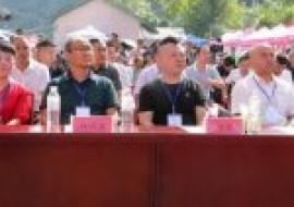 VC果园:泸溪县举行消费扶贫产品推介会,品尝葡萄丰收的甜蜜
