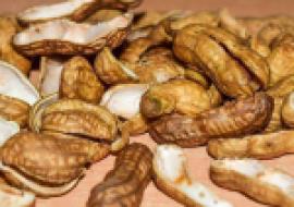 VC果园:花生壳的功效与作用有哪些?